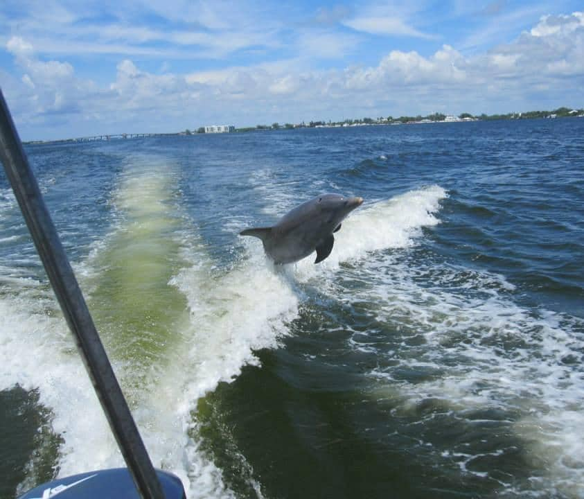 People-Powered Parks Save Florida's Barrier Islands